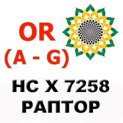 РАПТОР НС Х 7258 — семена подсолнечника A — G